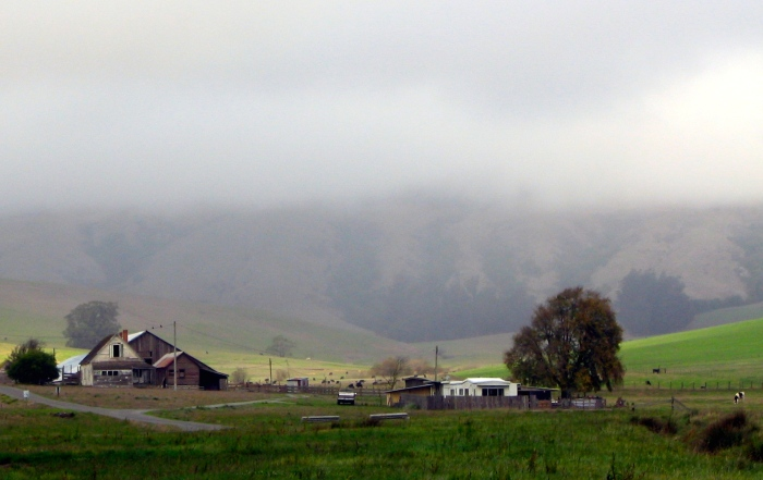 East of Eden, Steinbeck's California--Salinas Valley
