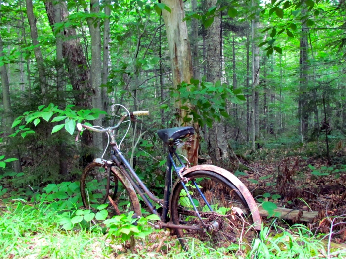 Abondoned bike on the trail