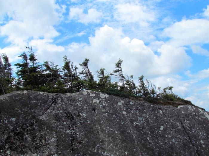 Looking up at the ridge