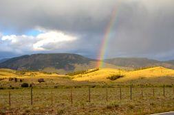 Colorado Color