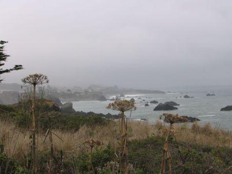 Mendocino Coast, California