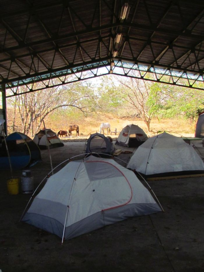 Tent city at the bodega