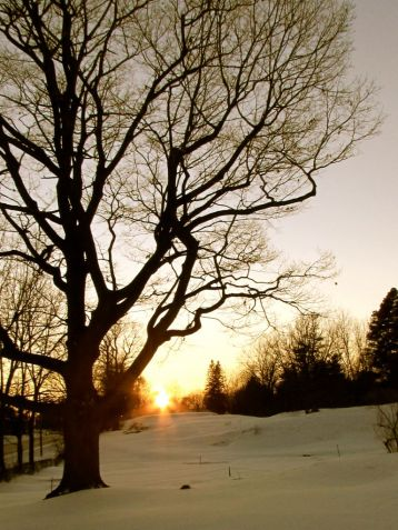 The days are getting longer. -- Brockville, Ontario