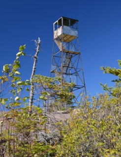 St Regis Fire Tower -- Adirondack Mountains, NY