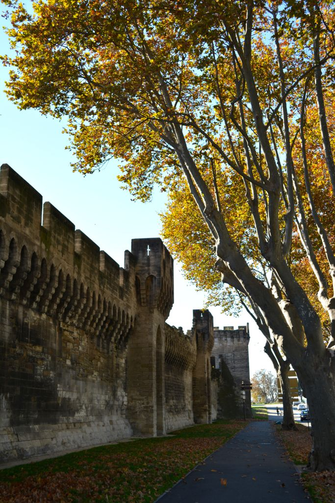 The ramparts bounding Avignon