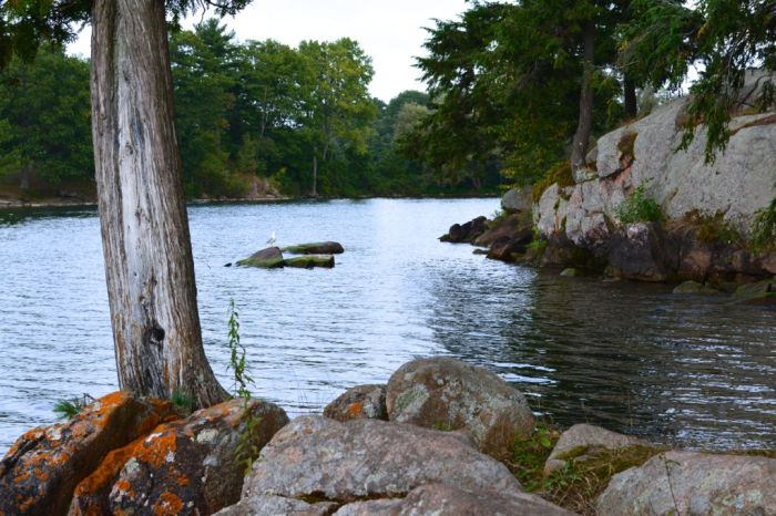 Enjoying nature in the Thousand Islands before the change of season.—Wellesley Island State Park, New York