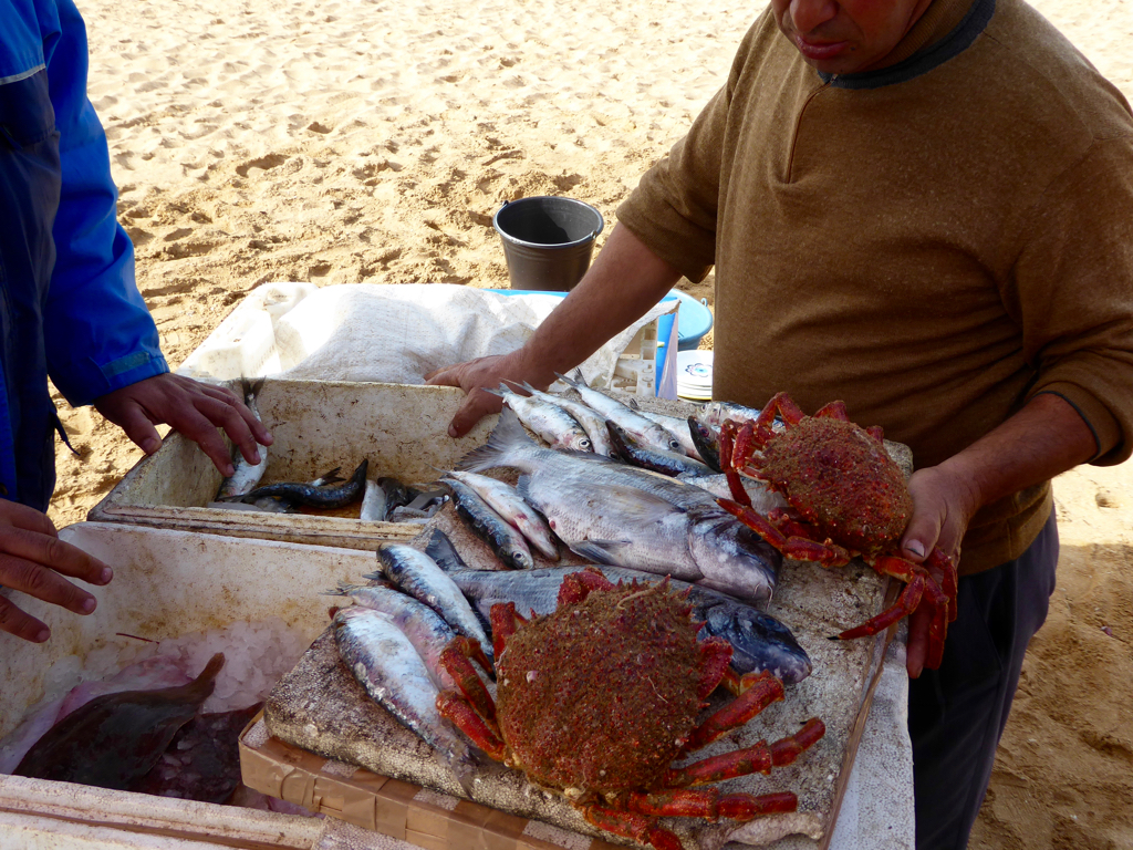 Selection of seafood in Oualidia, Morocco